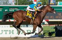 American Pharoah cruises to victory in the Haskell Invitational