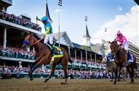 Kentucky Derby 2015:  Where Are They Now?