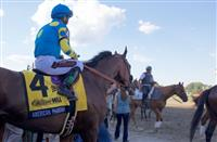 American Pharoah & Haskell Day in Photos