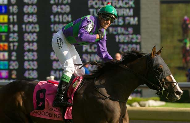Ami's Holiday wins 2014 Breeders' Stakes at Woodbine.