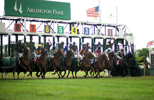 Brown Almighty (3) with Francisco Torres aboard wins a Maiden Special Weight race Saturday afternoon at Arlington Park.