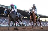 Pegasus World Cup: What the Field Might Look Like