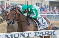 "Artemis Agrotera, Jose Lezcano aboard, wins the Grade 1 Frizette Stakes, a ""Win and You're In Breeders' Cup Juvenile Fillies Division"" race at Belmont Park in Elmont, New York."