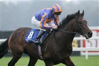 Await The Dawn winning the Kilternan Stakes with Johnny Murtagh at Leopardstown Racecourse.