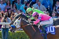 Breeders' Cup Juvenile Fillies - Preview & Selections