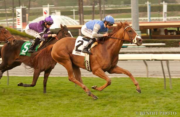 Birdlover wins down the hill at Santa Anita.