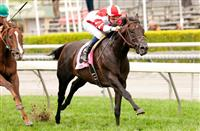 Bal a Bali headlines strong group in Friday's Seabiscuit Handicap