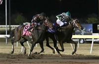 Bayerd bests Shotgun Kowboy in the 2014 Springboard Mile