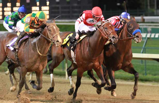Bayern, Embellishing Bob, and Myositis Dan (2014 Derby Trial).