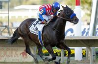 Bayern Dazzles in the Pennsylvania Derby