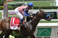 Belmont Stakes 2015: Great Grade One Undercard