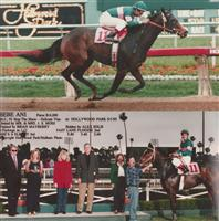 Bebe Ani and Alex Solis winning at Hollywood Park 5/1/95