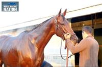 Beholder Interview 615 X 400