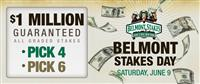 2012 Belmont Stakes Guaranteed Pick 4 and Pick 6