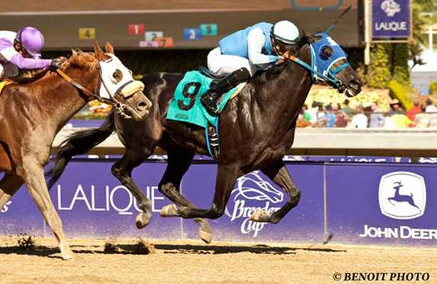 Better Bet wins 2013 Golden State Juvenile.