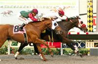 Big Macher Mows Down Rivals in Cary Grant