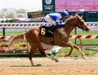 Bluegrass Atatude closing from way off pace to win impressive maiden race at Pimlico.