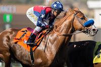 Blueskiesnrainbows in the Native Diver 2014