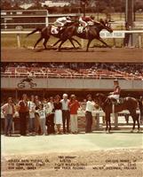 """""""Bo Donna"""" June 8 1979"""