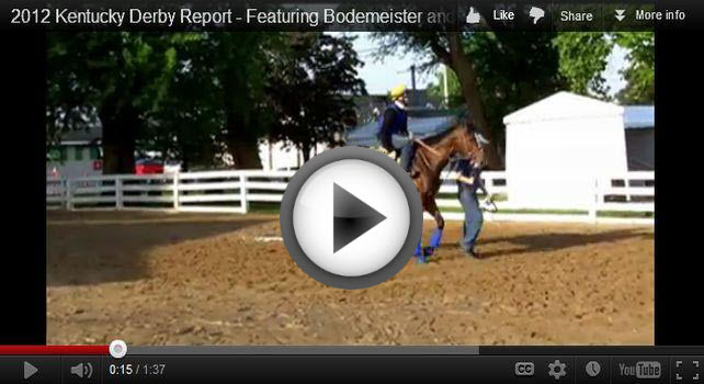 Bodemeister backstage at the Derby Video