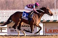 Bold Curlin wins 2014 Native Dancer.