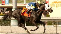 Bright Thought wins 2013 San Luis Rey.