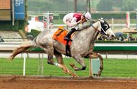 Kentucky Derby 2015 - Calculator Pedigree Profile