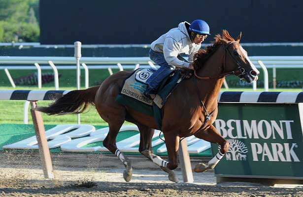 California Chrome works for Belmont Stakes (5-31-14).