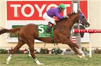 Plenty of Changes at the top since the Breeders' Cup