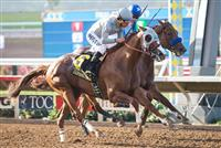 California Chrome edges Dortmund in the San Diego Handicap