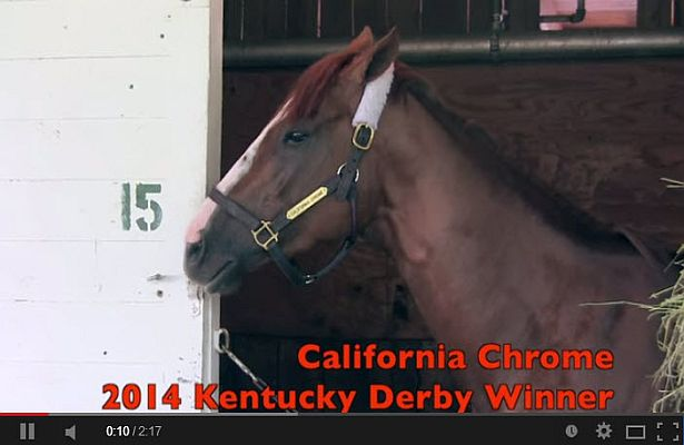 California Chrome captions video