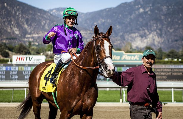 California Chrome win circle 615 X 400