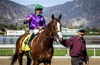 West Coast Kentucky Derby Rankings: 3/15/14