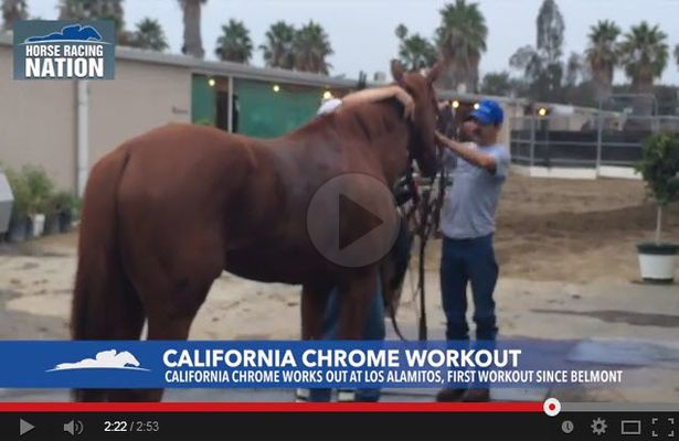 California Chrome workout video 615 X 400