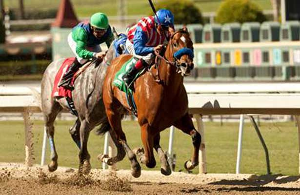 Can the Man wins 2013 Speakeasy at Santa Anita.