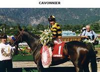 Cavonnier