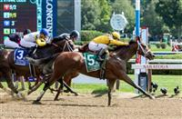 Cavorting Proves Successful at Two Turns in Personal Ensign