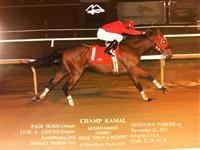 Champ Kamal