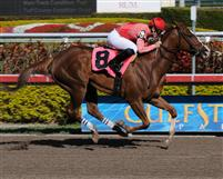 Christine Daae in an allowance win at Gulfstream on February 28, 2010