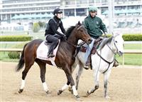 Close Hatches trains at Churchill Downs towards the 2013 Kentucky Oaks.