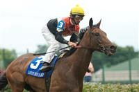 Closeout captures the 2009 Locust Grove under Robbie Albarado