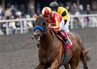 Coil, with Martin Garcia aboard, wins the 2011 Affirmed Handicap at Hollywood.
