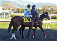Race 7 at Golden Gate 2-17-13