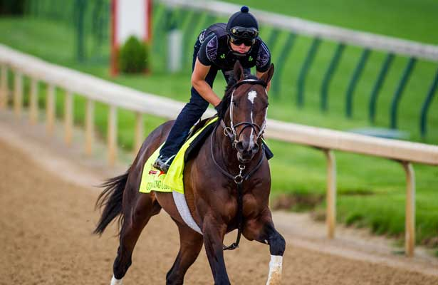 April 30, 2014: Commanding Curve gallops in preparation for the Kentucky Derby at Churchill Downs in Louisville Ky. Alex Evers/ESW/CSM