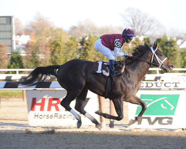 Consortium breaks maiden at Aqueduct (11-12-11).