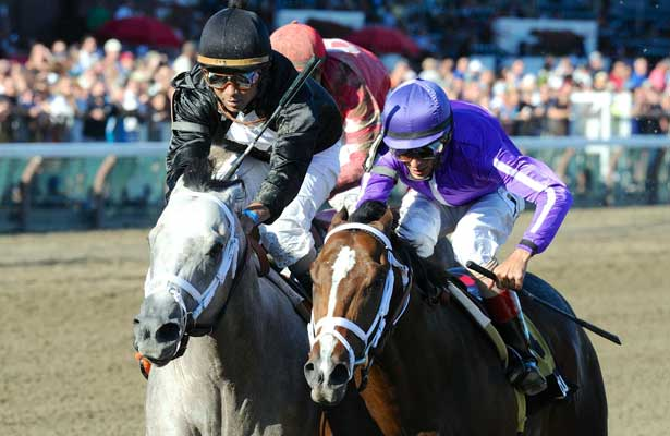 Corfu (no. 4), ridden by John Velazquez and trained by Todd Pletcher, wins the 108th running of the grade 2 Saratoga Special Stakes for two year olds on August 11, 2013 at Saratoga Race Course in Saratoga Springs, New York. (Bob Mayberger/Eclipse Sportswire)