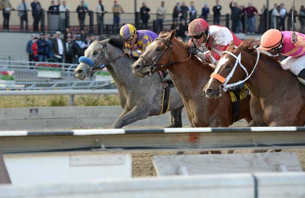 Coup de Grace wins 2014 Bay Shore