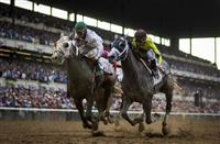 Travers Stakes 2016: Odds and Picks