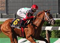 D' Funnybone captures the 2009 Belmont Futurity with an impressive run