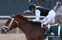 Kentucky Derby 2014 - Danza Pedigree Profile